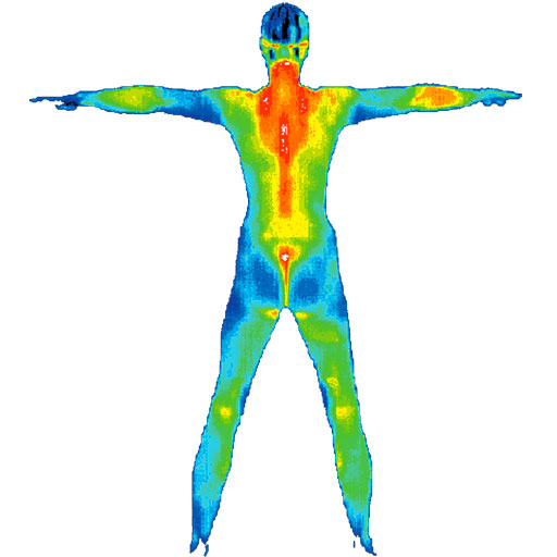 thermography of wi fav icon